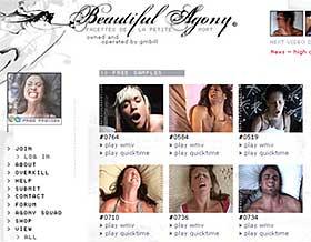 Beautiful Agony Website